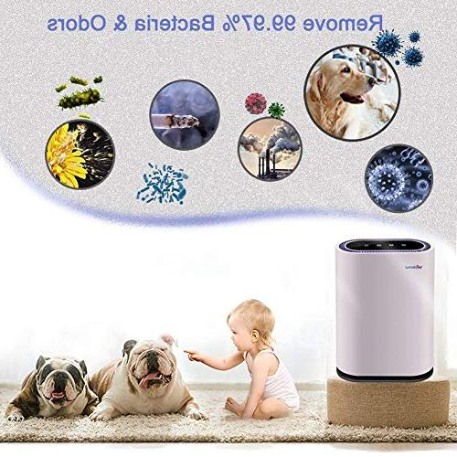 Webetop 3 HEPA Home Air Large Allergies Pets