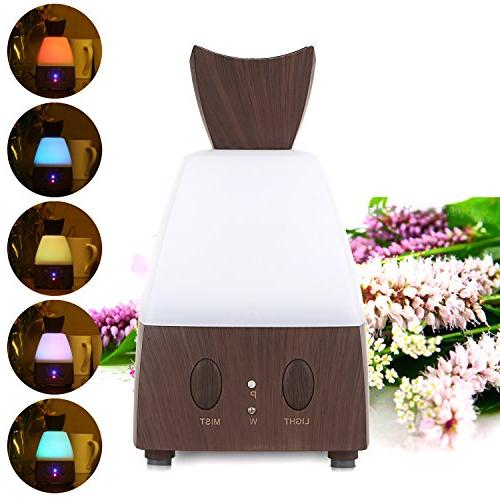 Bestlucky Home Office Electric Diffuser Cool Humidifier Air LED Light