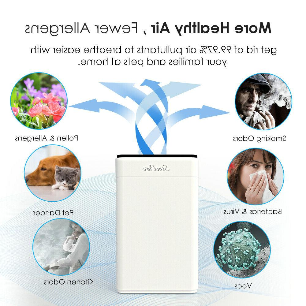 Large for Allergies Air Cleaner Medical Grade H12