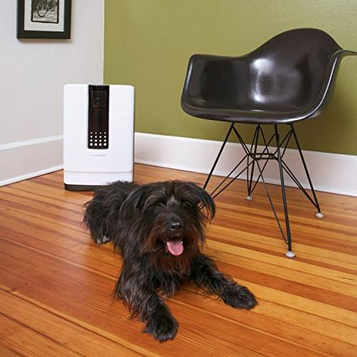 Hathaspace Smart True HEPA Air 6-in-1 Cleaner Allergies, Odors – Eliminates Pet Hair, Allergens, Mold, Viruses