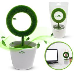 Plant Air Purifier Ionizer for Allergens Odor Smoke Pets Pol